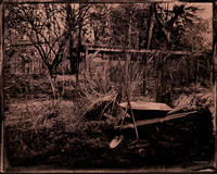 wet plate collodion, landscapes, trees, exterior spaces, exterior structures