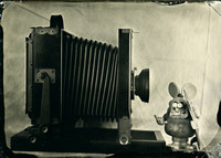 wet plate collodion, still life