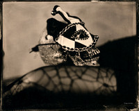wet plate collodion, still life, the jokerman series, cabaret