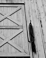 Old Barn Door & Rope