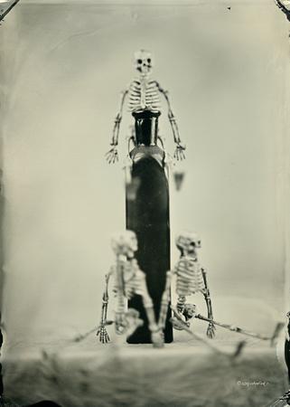 wet plate collodion, Still Life, Skulls, Skeletons, Bones, Graveyards