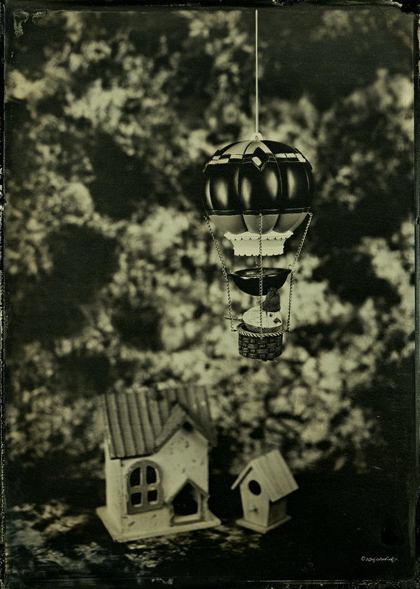 collodion, wet plate, ferrotype, tintype, still life, paparazzi
