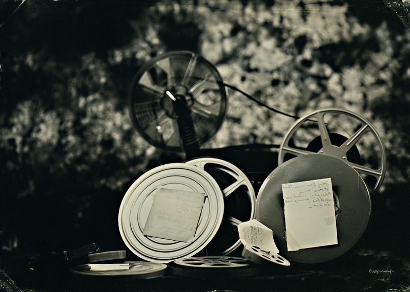 wet plate collodion, ferrotype, tinplate, the past lives project, still life
